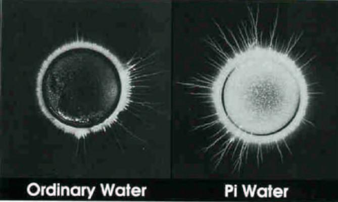 Living Energy PiMag Water
